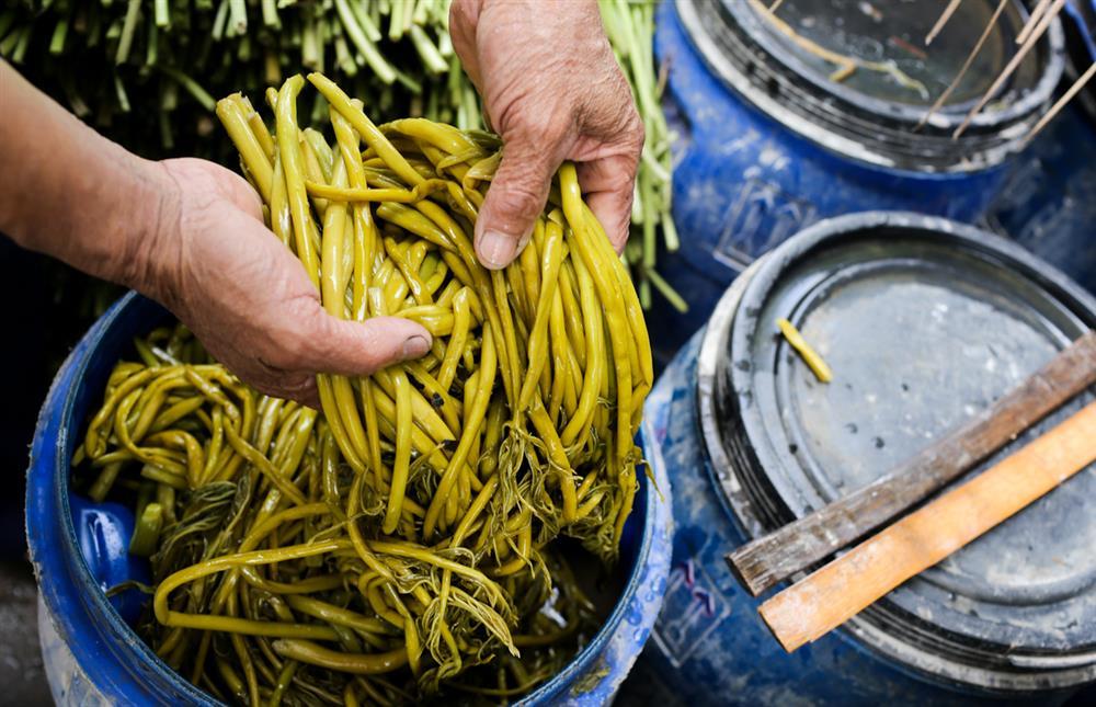 Xưa dùng để chống đói, nay trồng loại rau này không chỉ thoát nghèo mà còn kiếm tiền triệu mỗi ngày-4