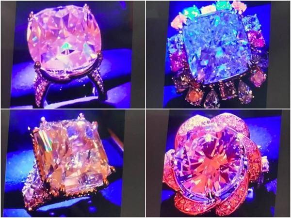 Cận cảnh BST kim cương hột mít sau này sẽ được bán hết để làm từ thiện của bà Phương Hằng-6