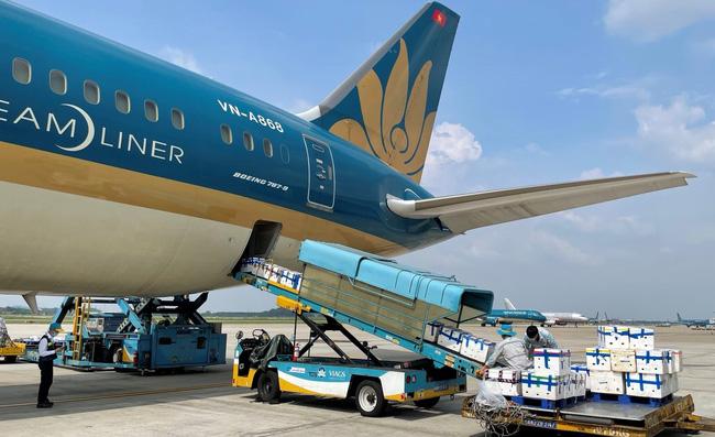 Gần 100 tấn vải thiều từ tâm dịch Bắc Giang ngồi khoang hành khách siêu máy bay vào TP.HCM-1