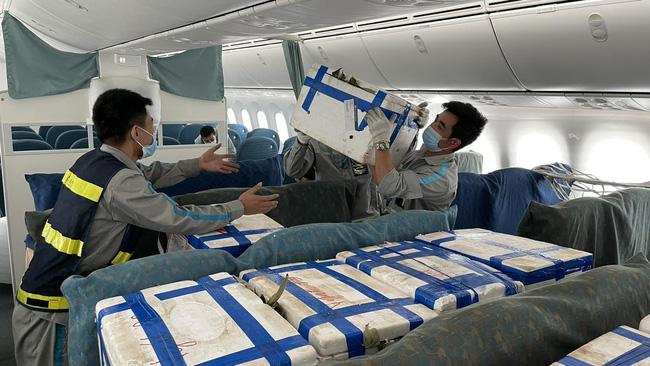 Gần 100 tấn vải thiều từ tâm dịch Bắc Giang ngồi khoang hành khách siêu máy bay vào TP.HCM-2