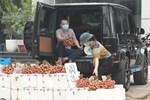 Thanh niên Bắc Giang chơi lớn không dùng hoa mà mua vải để trang trí xe cưới khiến dân mạng hết lời khen ngợi vì hành động nghĩa tình-3