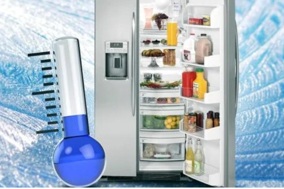 Bí quyết dùng tủ lạnh siêu tiết kiệm, tha hồ để thực phẩm vẫn không sợ đốt tiền-1