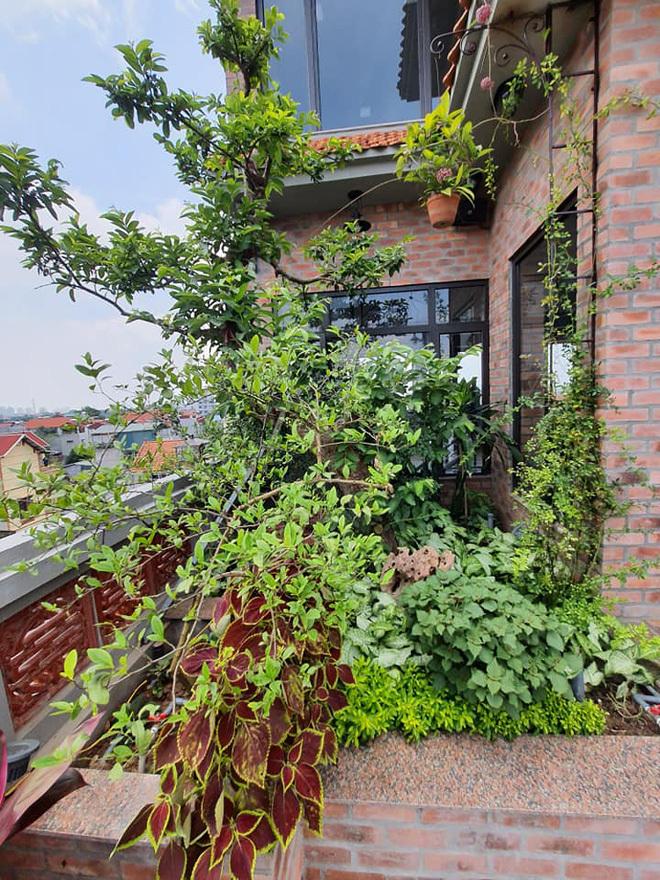 Nhà cổ nằm trên nóc biệt thự gần 500m2 ở Hà Nội-12