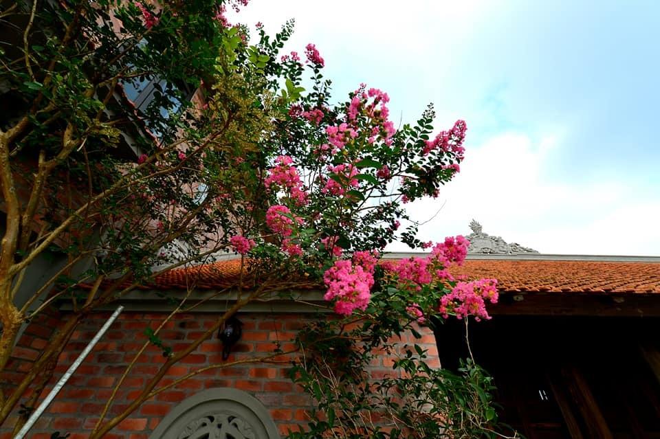 Nhà cổ nằm trên nóc biệt thự gần 500m2 ở Hà Nội-16