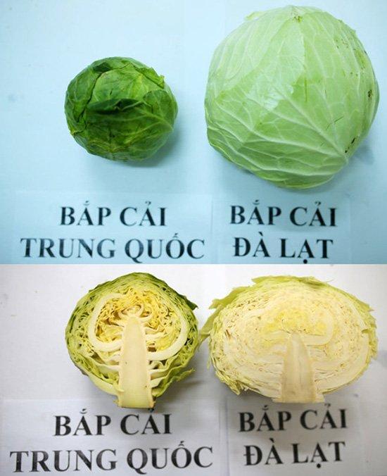 20 cách phân biệt rau củ Trung Quốc và Việt Nam, nắm chắc để tránh mua nhầm-4