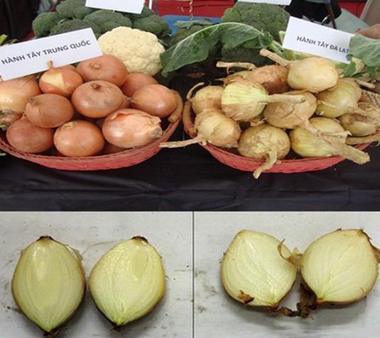 20 cách phân biệt rau củ Trung Quốc và Việt Nam, nắm chắc để tránh mua nhầm-8
