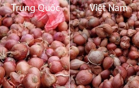 20 cách phân biệt rau củ Trung Quốc và Việt Nam, nắm chắc để tránh mua nhầm-9