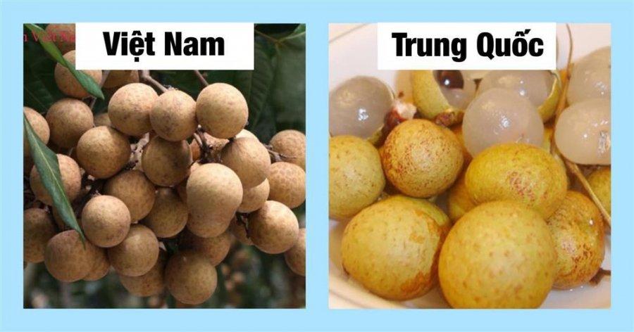 20 cách phân biệt rau củ Trung Quốc và Việt Nam, nắm chắc để tránh mua nhầm-10