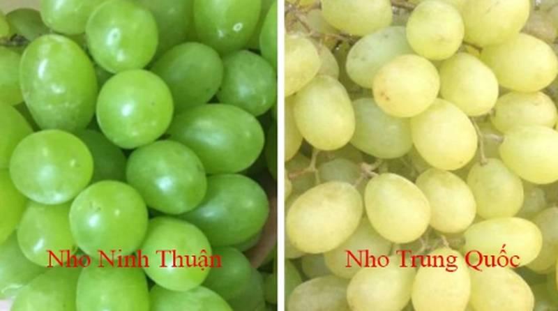 20 cách phân biệt rau củ Trung Quốc và Việt Nam, nắm chắc để tránh mua nhầm-17