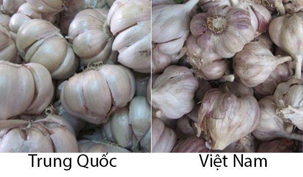 20 cách phân biệt rau củ Trung Quốc và Việt Nam, nắm chắc để tránh mua nhầm-18