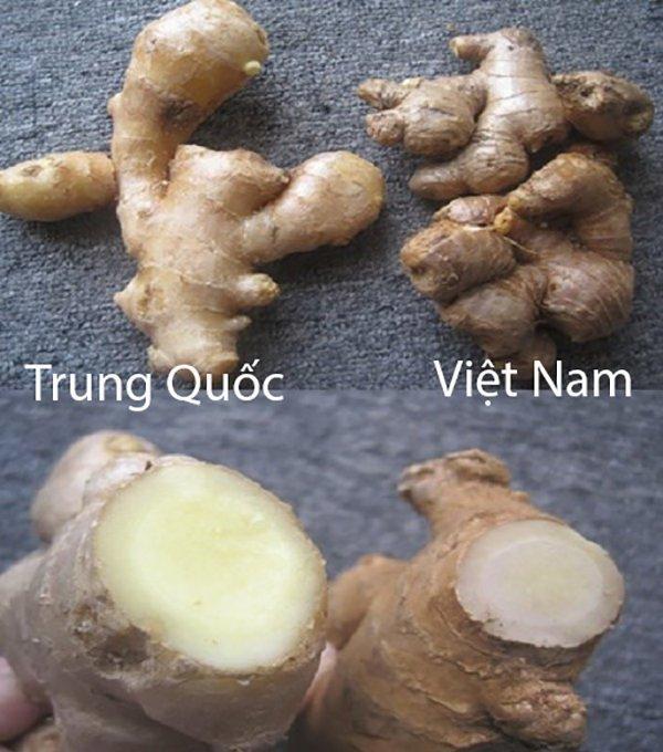 20 cách phân biệt rau củ Trung Quốc và Việt Nam, nắm chắc để tránh mua nhầm-19