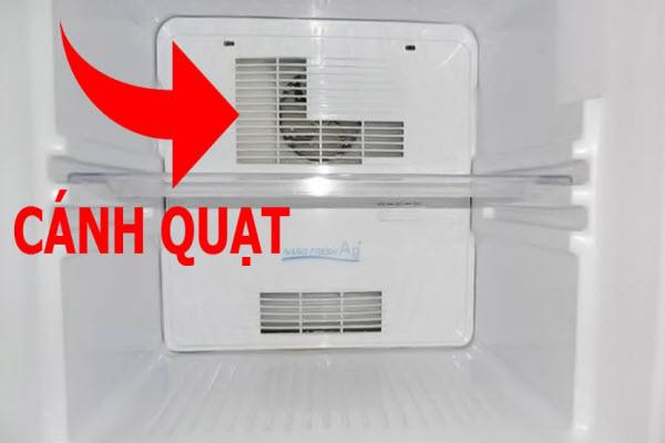 Bắt bệnh tủ lạnh kêu to bất thường nhờ 6 điểm, nếu nắm vững chẳng có nhân viên sửa chữa nào qua mặt được bạn-3