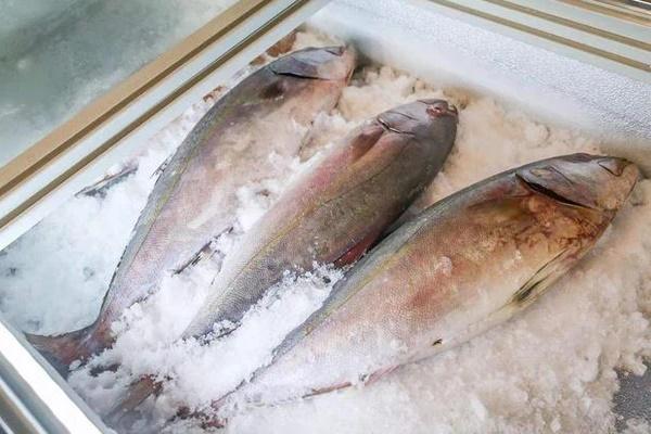 3 loại cá là bể chứa chất gây ung thư và kim loại nặng tuyệt đối đừng nên mua, nhưng nhiều người không biết vẫn ăn hàng ngày-2