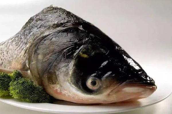 3 loại cá là bể chứa chất gây ung thư và kim loại nặng tuyệt đối đừng nên mua, nhưng nhiều người không biết vẫn ăn hàng ngày-3