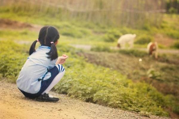 Trẻ em có chỉ số thông minh cao hầu hết đều có 1 trong 4 loại