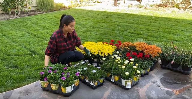 Ngắm khu vườn cây nào cũng trĩu quả và hoa rực rỡ trong biệt thự triệu đô ở Mỹ của Phạm Hương-2