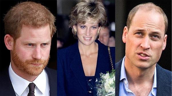 Harry đưa ra yêu cầu ngang ngược cho ngày trở về dự lễ tưởng niệm Công nương Diana sắp tới và Thái tử Charles tỏ rõ thái độ-1