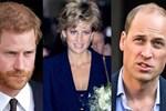 Vén màn bí ẩn cái chết của Công nương Diana: Bác sĩ phẫu thuật kể lại cuộc chiến với tử thần, dập tắt cuộc tranh cãi 24 năm qua-5