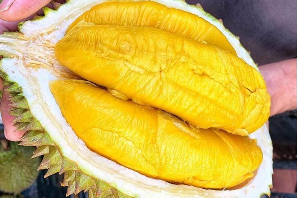 8 loại trái cây thuần Việt, không bao giờ nhập từ Trung Quốc, bà nội trợ yên tâm mua cho gia đình-1