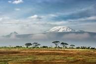 Cảnh quan ngoạn mục trên đỉnh núi cao nhất châu Phi