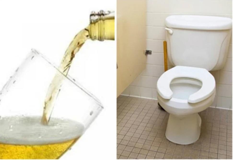 Mang bia đổ vào nhà vệ sinh, tưởng phí của ai ngờ nhận được hiệu quả đáng ngạc nhiên-1