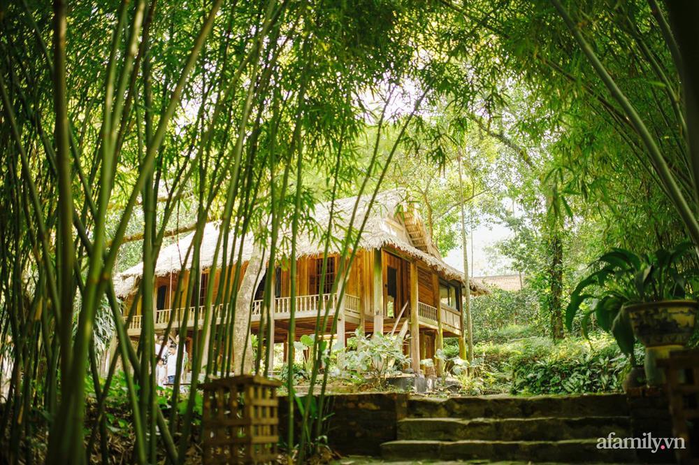 Cuộc sống yên bình trong ngôi nhà nhỏ và khu vườn xanh mát bóng cây ở ngoại thành Hà Nội-1