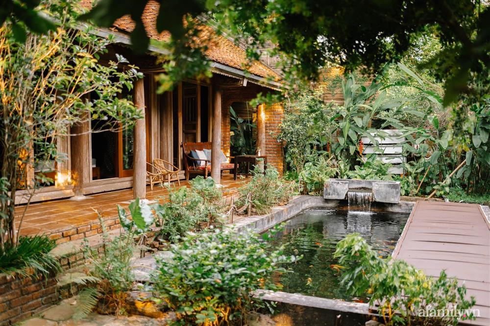 Cuộc sống yên bình trong ngôi nhà nhỏ và khu vườn xanh mát bóng cây ở ngoại thành Hà Nội-2
