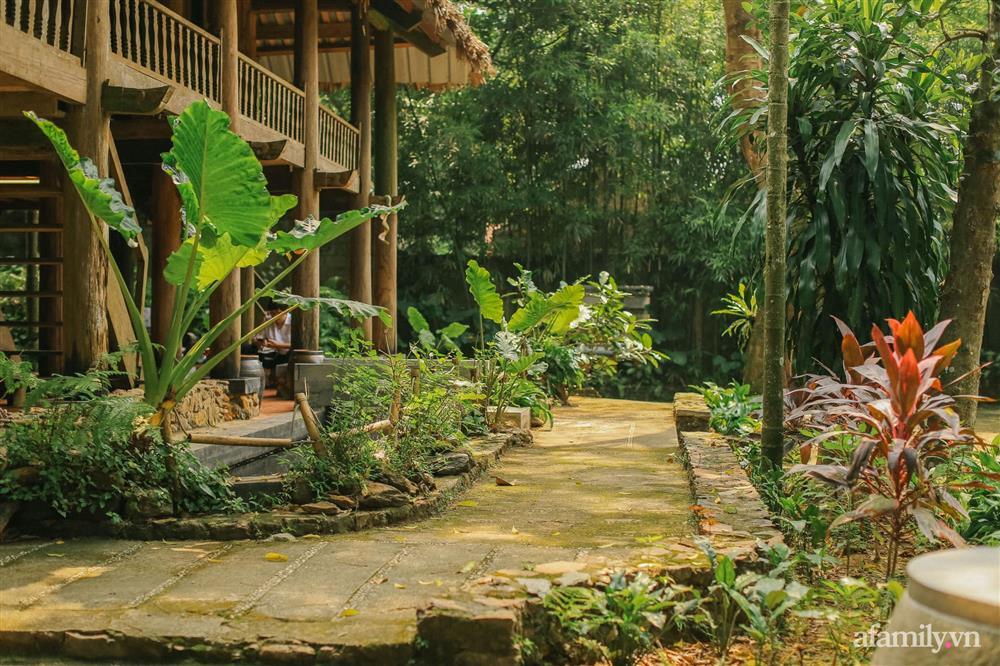 Cuộc sống yên bình trong ngôi nhà nhỏ và khu vườn xanh mát bóng cây ở ngoại thành Hà Nội-5