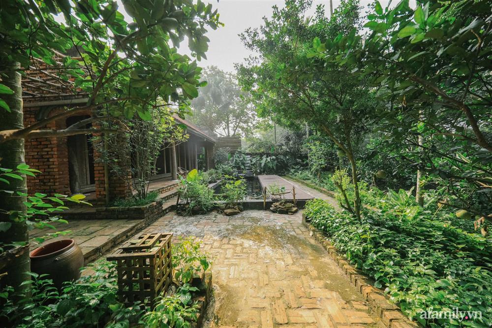 Cuộc sống yên bình trong ngôi nhà nhỏ và khu vườn xanh mát bóng cây ở ngoại thành Hà Nội-7