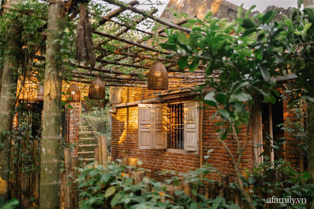 Cuộc sống yên bình trong ngôi nhà nhỏ và khu vườn xanh mát bóng cây ở ngoại thành Hà Nội-10