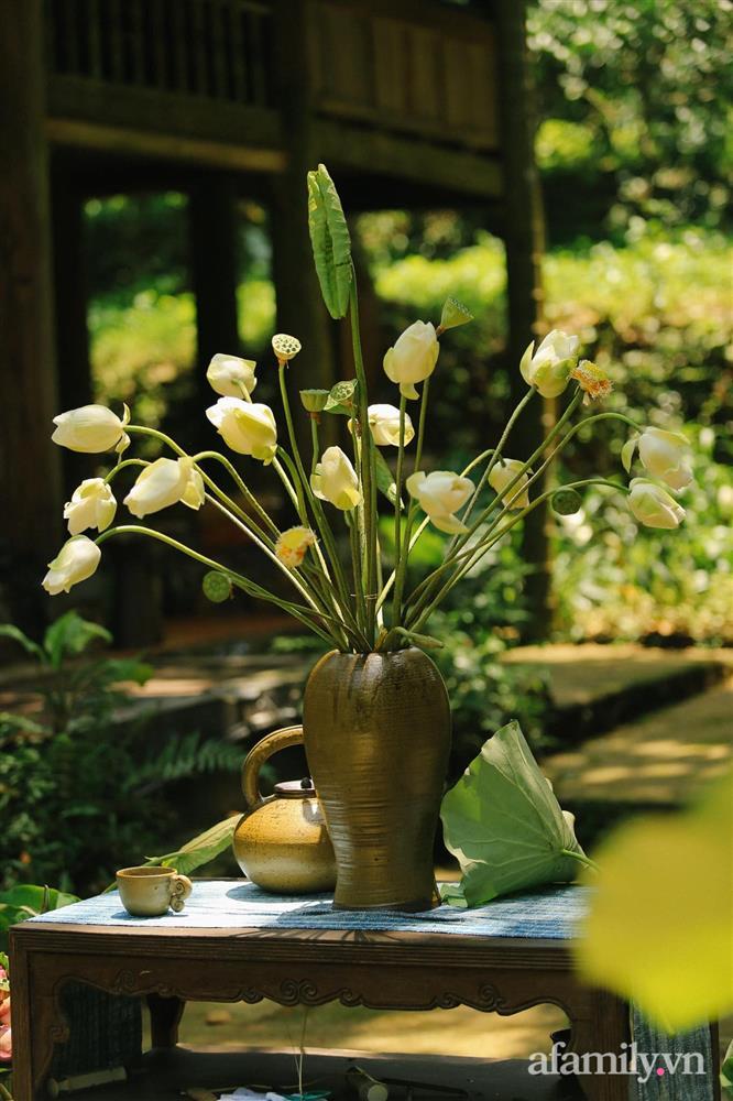 Cuộc sống yên bình trong ngôi nhà nhỏ và khu vườn xanh mát bóng cây ở ngoại thành Hà Nội-27