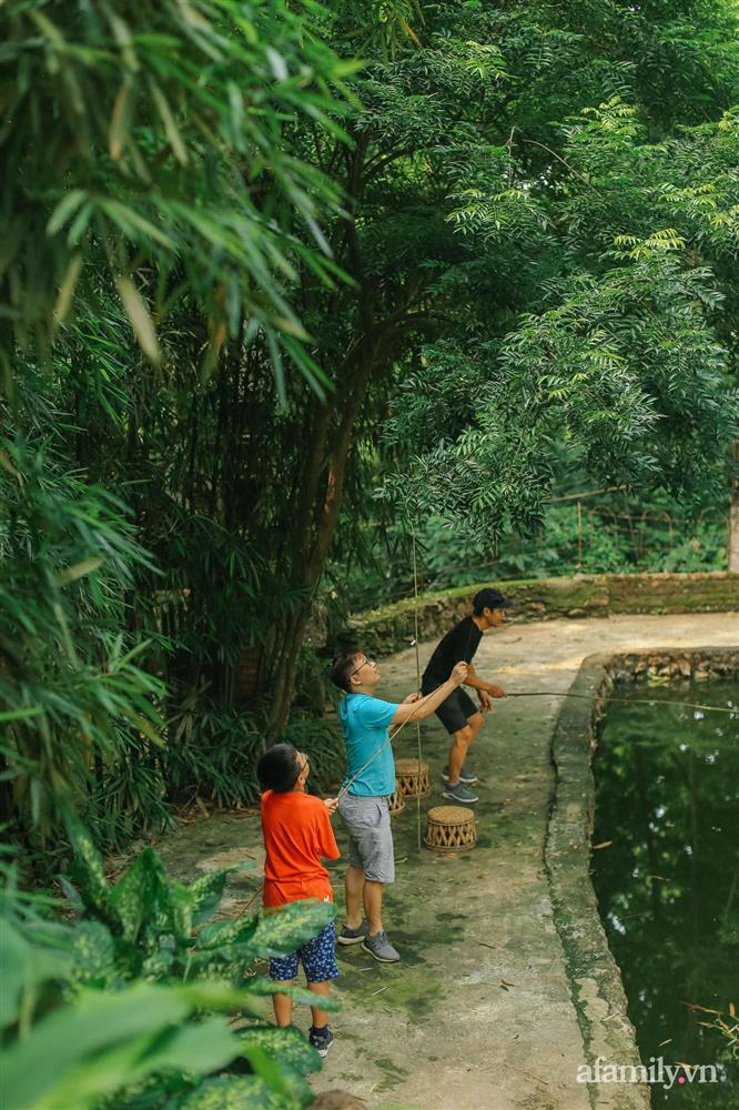 Cuộc sống yên bình trong ngôi nhà nhỏ và khu vườn xanh mát bóng cây ở ngoại thành Hà Nội-34