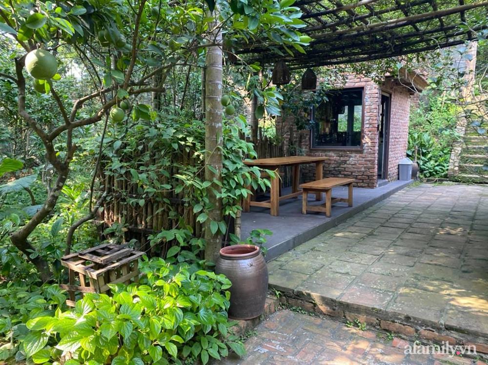 Cuộc sống yên bình trong ngôi nhà nhỏ và khu vườn xanh mát bóng cây ở ngoại thành Hà Nội-38