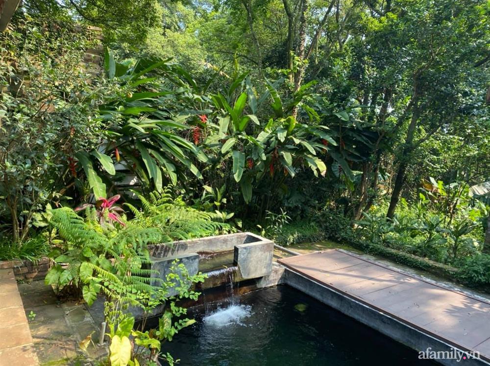 Cuộc sống yên bình trong ngôi nhà nhỏ và khu vườn xanh mát bóng cây ở ngoại thành Hà Nội-43