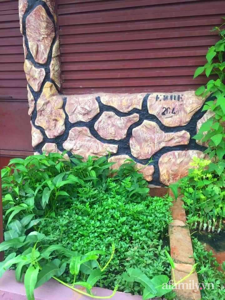 Khu vườn trước cửa xanh mát với đủ loại rau củ của chàng trai Việt ở châu Phi-8