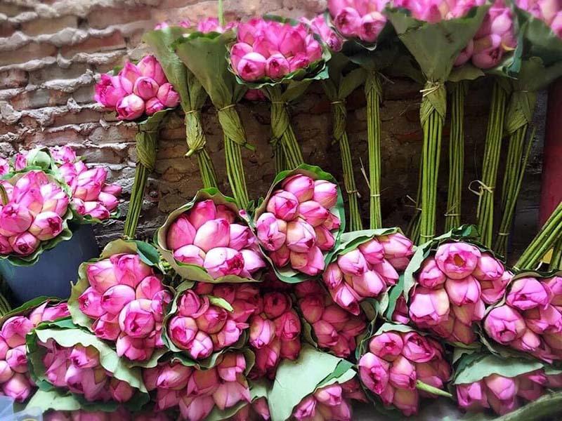 Đặc sản Hà thành năm chỉ có một mùa, mua trăm bông cất tủ dùng dần-3