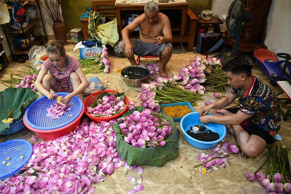 Chủ đầm sen hồ Tây bán hàng nghìn bông mỗi ngày-10