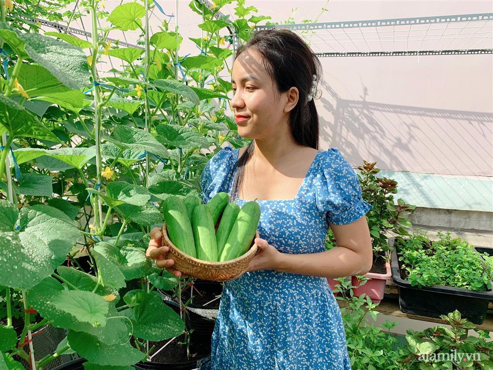 Khu vườn xanh tươi trên mái nhà và bí quyết đáng học hỏi của mẹ 3 con ở Sài Gòn-2