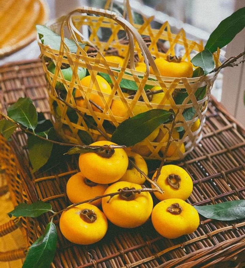 Thơm lừng hương cổ tích, Hà Thành lùng mua loại quả vàng ươm-1