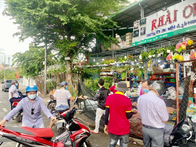 Dân Sài Gòn thích làm vườn mùa dịch, giới kinh doanh cây trồng hốt bạc-2