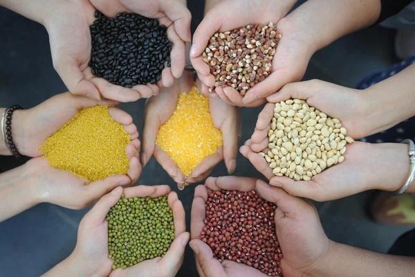 Ngũ cốc rất tốt cho cơ thể nhưng có 3 cách ăn sai có thể gây hại sức khỏe mà nhiều người mắc phải-1