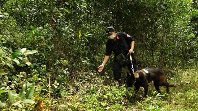 Vụ người phụ nữ tử vong sau vườn, nghi bị sát hại ở Quảng Bình: Nghi phạm là con rể-3