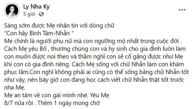 Dính tin đồn nổ về độ giàu, Lý Nhã Kỳ có dòng trạng thái đầy ẩn ý, 1 nghệ sĩ Việt bất ngờ lên tiếng bênh vực-1