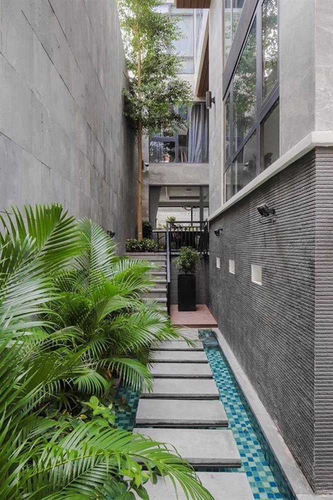 Vườn rau xanh mướt bên trong nhà phố của Lê Hoàng The Men-2