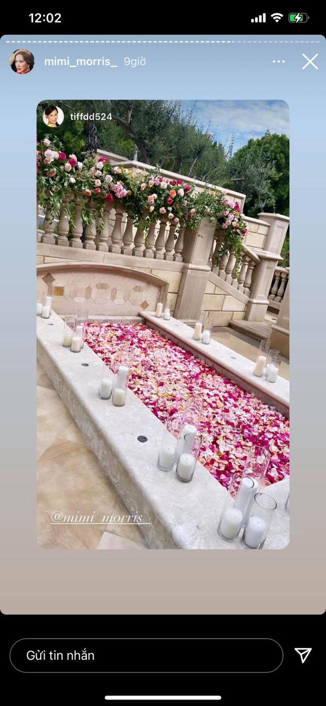 Nữ tỷ phú người Việt ở Mỹ từng được Hà Hồ, Vũ Khắc Tiệp tới thăm tổ chức sinh nhật trải toàn hoa hồng đắt đỏ không thua gì đám cưới hoàng gia-5