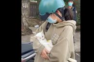 Nữ sinh bật khóc xin đưa mèo đi chữa bệnh nhưng bị người ở chốt kiểm dịch 'mỉa mai', bắt đóng phạt: Chú mèo đã chết, cán bộ trực chốt quay clip nói gì?