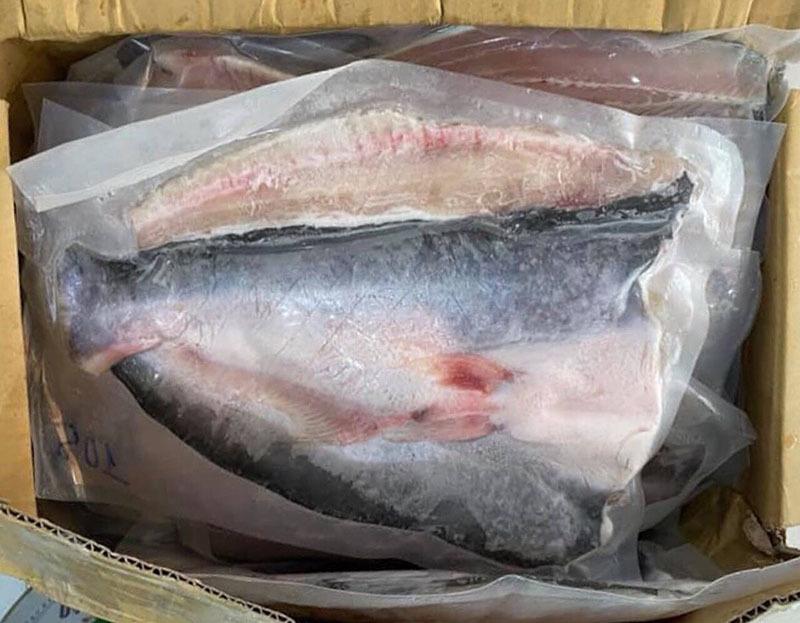Đặc sản hiếm Nam Bộ: Cá thơm mùi lá dứa, giá 1 triệu đồng/kg-2