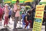 Bán rau đột biến miễn phí, Minh Râu Đồng Nai lại nhắn tin nức lòng người-7