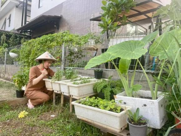 Nhật Kim Anh hóa nông dân chăm sóc vườn rau xanh mướt vào mùa dịch-1