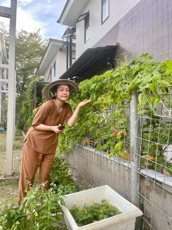 Nhật Kim Anh hóa nông dân chăm sóc vườn rau xanh mướt vào mùa dịch-12